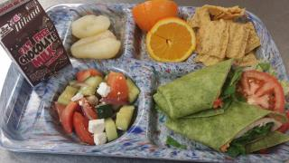 greek-turkey-wrap-lunch